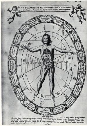 Kircher's Astrological Man